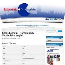 Corps humain - Human body - Vocabulaire anglais