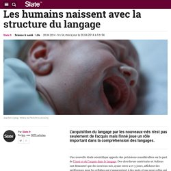 Les humains naissent avec la structure du langage
