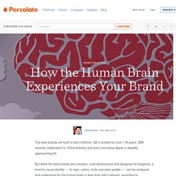 How the Human Brain Experiences Your Brand