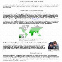 Human Culture: Characteristics of Culture
