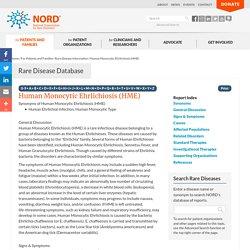Human Monocytic Ehrlichiosis (HME)