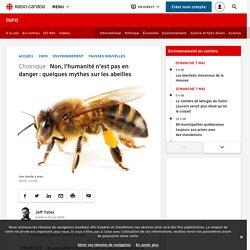 Non, l'humanité n'est pas en danger: quelques mythes sur les abeilles