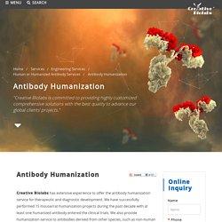 antibody humanization service