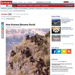 How Humans Became Social