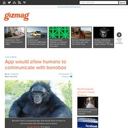 App would allow humans to communicate with bonobos