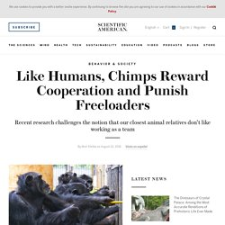 Like Humans, Chimps Reward Cooperation and Punish Freeloaders
