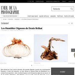 Les Humbles Oignons de Denis Brihat