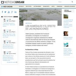 Los humedales y el efecto de las inundaciones » Noticias UNSAM