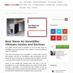 Best warm air humidifier Ultimate Guides and Reviews