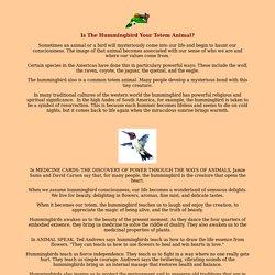 Hummingbird as Totem Animals