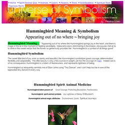 Hummingbird Meaning & Hummingbird Symbolism