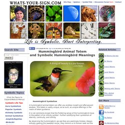 Hummingbird Animal Totem and Symbolic Hummingbird Meanings