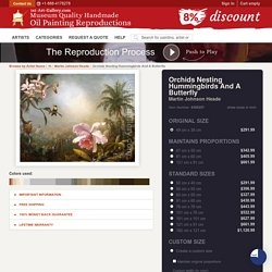 Orchids Nesting Hummingbirds And A Butterfly Martin Johnson Heade Reproduction