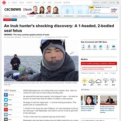 An Inuk hunter's shocking discovery: A 1-headed, 2-bodied seal fetus - North