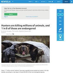 Hunters are killing millions of animals, and 1 in 8 of those are endangered