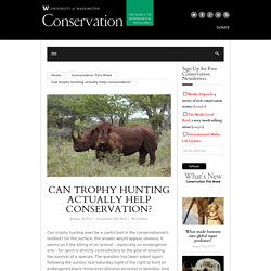 Can trophy hunting actually help conservation?