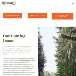 Deer Hunting Land Leases & Clubs in Georgia, Virginia