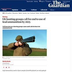 THE GUARDIAN 24/02/20 UK hunting groups call for end to use of lead ammunition by 2025