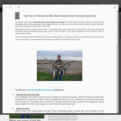 Top Tips for Best South Dakota Duck Hunting