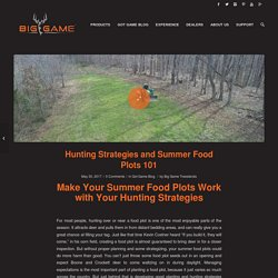 Hunting Strategies and Summer Food Plots 101 - Big Game Treestands