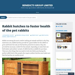 Rabbit hutches to foster health of the pet rabbits