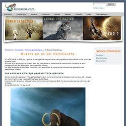 Huttes en os de mammouths