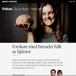 Med huvudet fullt av hjärnor - DN Fokus