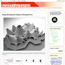 Design Development/ Analysis of Emergent Form