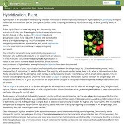 Hybridization, Plant - Biology Encyclopedia - body, human, process, animal, different, chromosomes, used, types