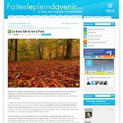 Le bois fait la loi à Foix