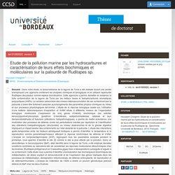 UNIVERSITE DE BORDEAUX - 2015 - Thèse en ligne : Etude de la pollution marine par les hydrocarbures et caractérisation de leurs effets biochimiques et moléculaires sur la palourde de Ruditapes sp.