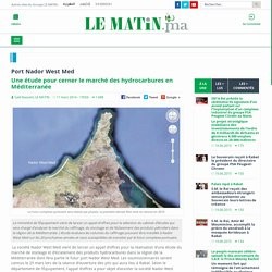 03/2014 Appel d'offres étude du marché des hydrocarbures en Méditerranée