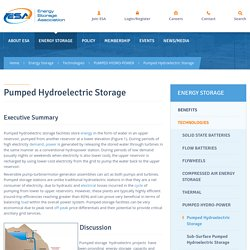Pumped Hydroelectric Storage