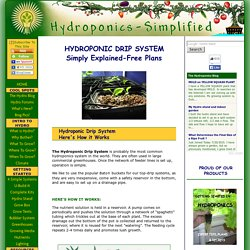 HYDROPONIC DRIP SYSTEM- FREE PLANS