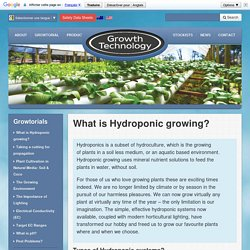 What is Hydroponic growing? - Growth Technology