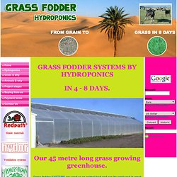 Hydroponic fodder grass system for Livestock worldwide & for drought areas