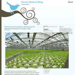 Polyhouse and hydroponic farming are the effective techniques for quality crops. at Saveer Biotech Blog