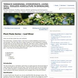 Plant Pests Series – Leaf Miner