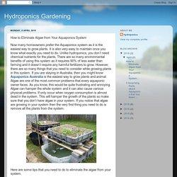 Hydroponics Gardening: How to Eliminate Algae from Your Aquaponics System