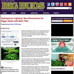 Hydroponics Lighting: New Discoveries for Bigger Buds with More THC