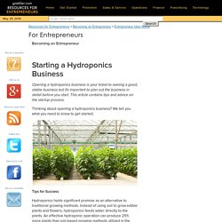Starting a Hydroponics Business - Becoming an Entrepreneur