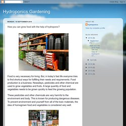 Hydroponics Gardening: How you can grow food with the help of hydroponic?
