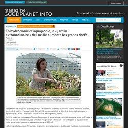 GOOD PLANET 11/06/17 En hydroponie et aquaponie, le « jardin extraordinaire » de Lucille alimente les grands chefs