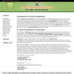 Hydroponie : la culture hydroponique
