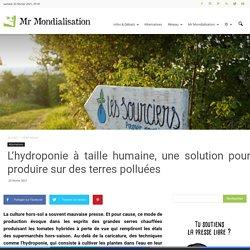 L'hydroponie à taille humaine, une solution pour produire sur des terres polluées