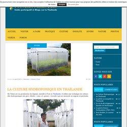La Culture Hydroponique en Thaïlande - toutelathailande.fr