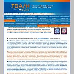 Hyperactivité Adulte TDAH TDA Déficit d'Attention Probleme concentration Procrastination Cyclothymie Impulsivité Ritaline Coaching