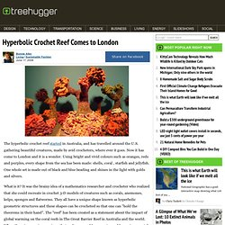 Hyperbolic Crochet Reef Comes to London