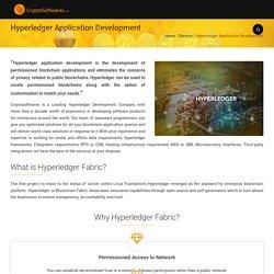 Hyperledger Blockchain Development Services : Crypto Softwares