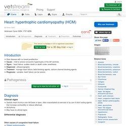 Heart: hypertrophic cardiomyopathy (HCM)